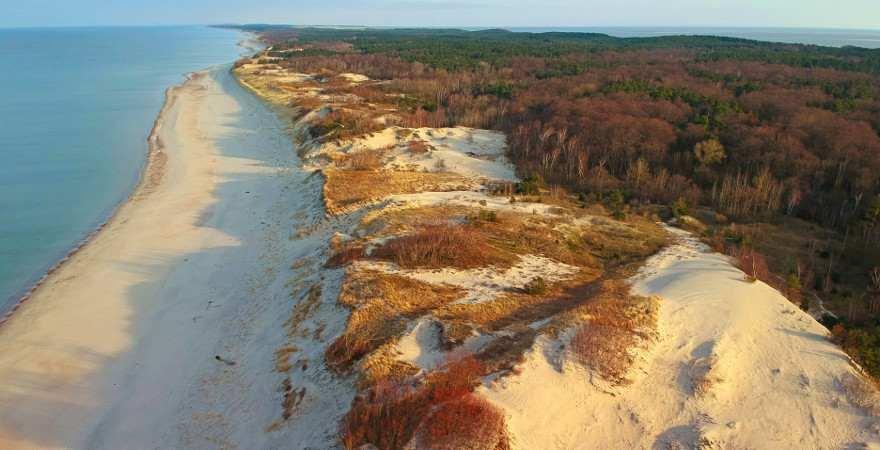 Ein Langer Strand mit Dünen und Wald aus der Luft