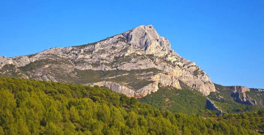 Der Gipfel des Mont Sainte Victoire ragt über einen Wald